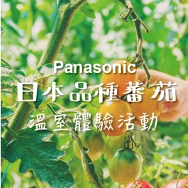 日本品種蕃茄 - Panasonic溫室體驗